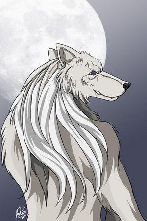 White_Werewolf_by_arvanahmodray.jpg